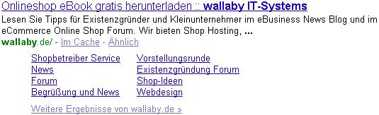 Google Sitelinks der Startseite